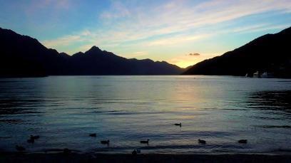 NEW ZEALAND: Duckies at the Queenstown lake. Don't think we'd ever get tired of this place.