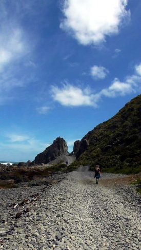 NEW ZEALAND: Coastal walk to Red Rocks on the south side of Wellington. Walked for 3 hours, saw no seals. Not that we're sore about that or anything.
