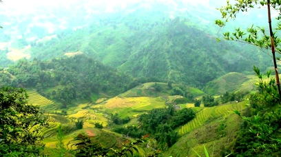 VIETNAM: The view above the rice paddies in Sapa. Green being the colour of choice here.