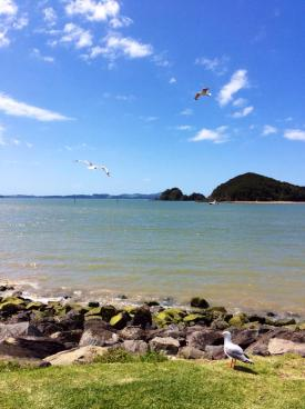 NEW ZEALAND: Paihia - Bay of Islands. Our first stop on our trip around New Zealand.
