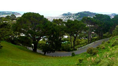NEW ZEALAND: View on the way down from Mount Victoria, Wellington. Looks bendy as, bro.